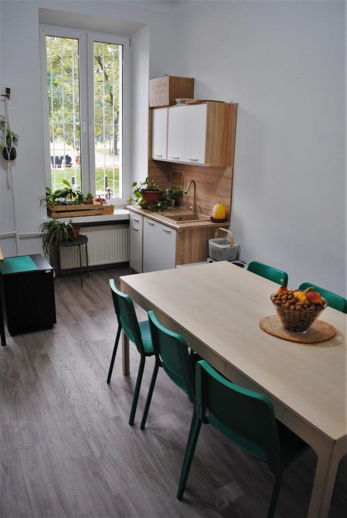 Stół z krzesłami i aneks kuchenny ze zlewem. W tle widać okno. Na parapecie stoją kwiaty.